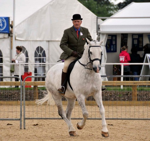 the judge riding one of the entries in a cob class