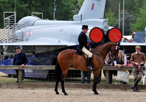 one of the competitors in the riding horse championship is standing here in the collecting ring, and on the other side of the rail is an RAF plane on display