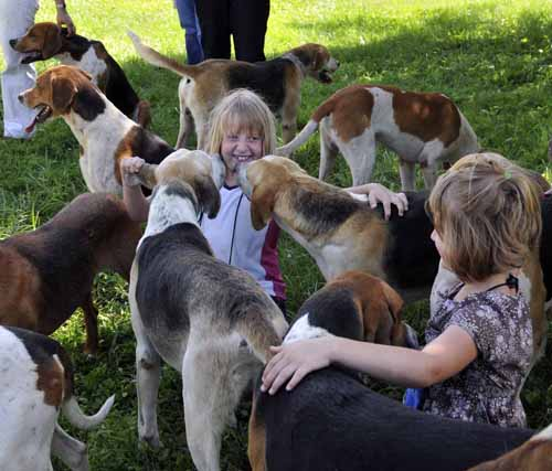 here (and in the next photo) it's hard to say who's having more fun: the childred or the very friendly foxhounds