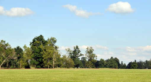 the polo field where the driving dressage and cones arena will be situated for this year's Lexington Combined Driving Classic and next year's World Equestrian Games