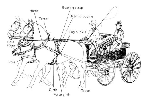 parts of a carriage harness