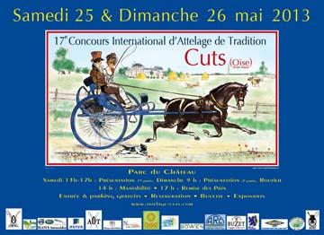 cuts 2013 poster